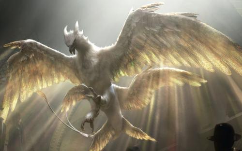 Tám loại lõi tạo nên những chiếc đũa phép đỉnh nhất trong Harry Potter