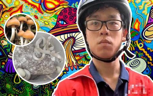 Bất ngờ với trình độ của nam sinh 19 tuổi bị bắt do trồng 'nấm ma túy': Sinh viên ĐH Bách Khoa Hà Nội, học sinh giỏi nhiều năm liền
