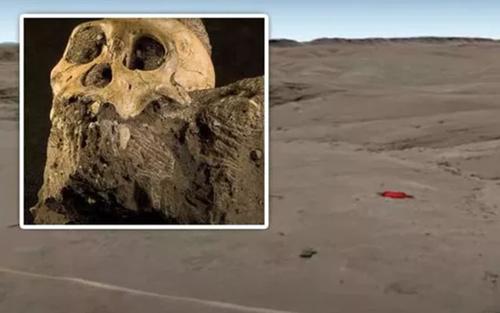 Hóa thạch 2 triệu năm tuổi được phát hiện nhờ Google Earth