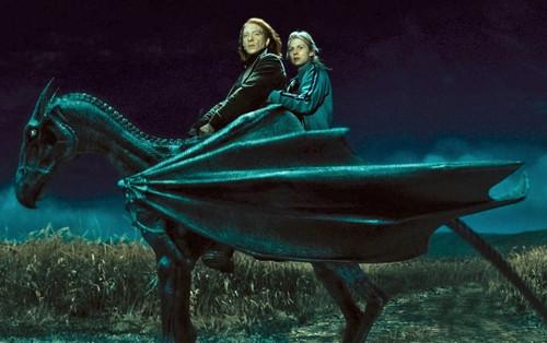Tìm hiểu về Vong Mã - loài sinh vật huyền bí có vẻ ngoài chết chóc trong Harry Potter