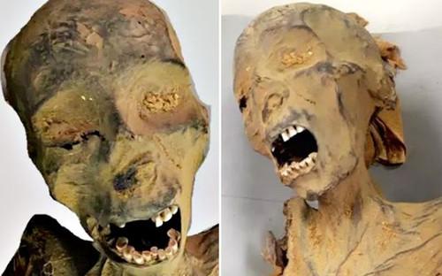 Xác ướp 'gào thét' ở Ai Cập qua đời vì đau tim