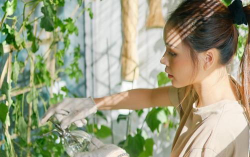 Đăng ảnh chăm bón vườn rau nhà Jun Phạm, hotgirl Sam hỏi fan: 'Đủ tiêu chuẩn làm vợ chưa?'
