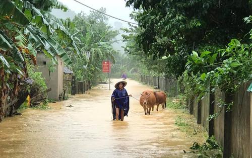 Hà Tĩnh lệnh sơ tán khẩn cả nghìn người dân khỏi vùng ngập lụt, sạt lở