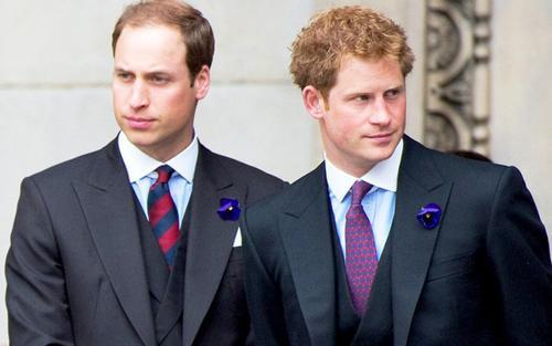 Hoàng tử William cho rằng Harry coi trọng danh vọng hơn gia đình