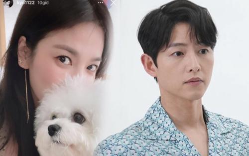 Hay tin Song Joong Ki 'cặp kè' Suzy, Song Hye Kyo liền 'dằn mặt'?