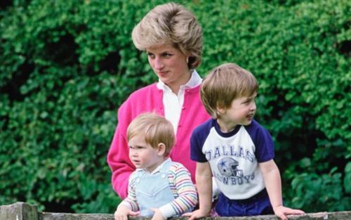 Harry nói với William: 'Nếu anh không muốn làm Vua thì để em'