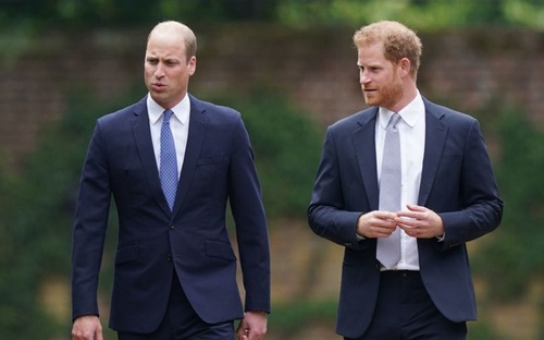 Hoàng tử Harry 'căng thẳng' khi xuất hiện cạnh anh trai trong lễ khánh thành tượng cố Công nương Diana