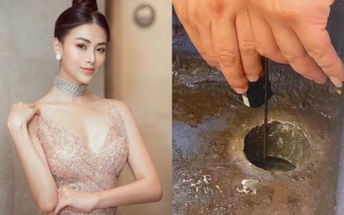 Nghe tiếng kêu lạ dưới ống nước, Hoa hậu Phương Khánh tìm kiếm và phát hiện điều bất ngờ