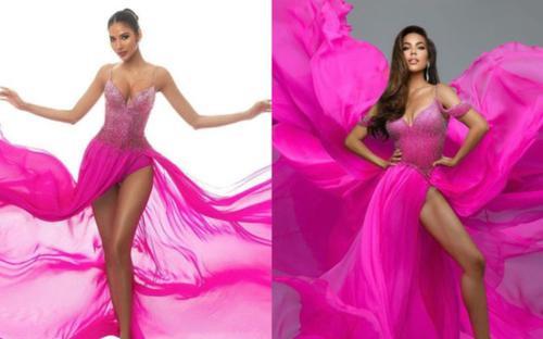 Váy đầm của Hoa hậu Việt bị NTK quốc tế đạo nhái trắng trợn khiến fan ấm ức