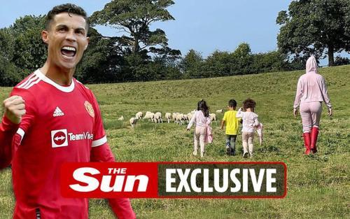 Ronaldo phải chuyển nhà vì bị đàn cừu quấy phá