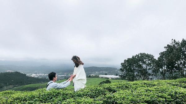 Đồi chè Cầu Đất Farm tuy đơn giản bởi những hàng chè xanh mướt nhưng vẫn rất mộc mạc, tự nhiên cho các cặp đôi