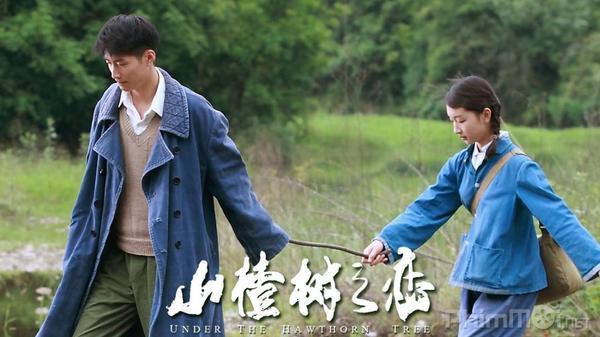 Nam chính Đông cung Trần Tinh Húc: Chỉ mới 23 tuổi, là thủ khoa học viện với kinh nghiệm diễn xuất đến  19 năm