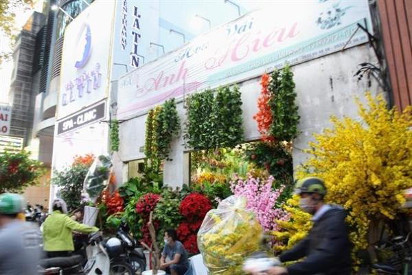 Trên các con đường như Tháp Mười (quận 6), Hải Thượng Lãn Ông (quận 5),… hàng loạt cửa hàng kinh doanh hoa giả cũng mở bán sớm phục vụ khách mua hoa trang trí nhà dịp năm mới.