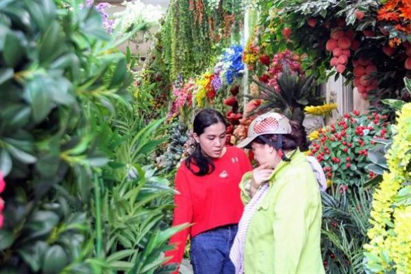 Nhân viên cửa hàng hoa giả Hồng Nhung cho biết các chậu hoa đào, mai rất đắt khách. Nhân viên liên tục kết hoa giả lên cây để kịp cung cấp hàng cho khách.