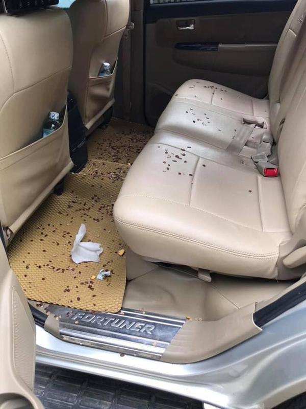 """Vỏ hạt dưa và vỏ cam để tránh say xe như này """"hơi sai sai"""" thì phải"""