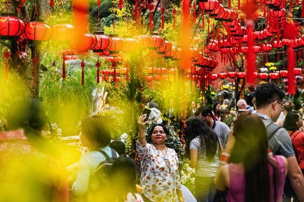 """Để chào đón Tết Kỷ Hợi 2019, Singapore cũng tổ chức buổi triển lãm hoa Dahlia Dreams vớigần 1.500 loài hoa diễn ra từ ngày 18/1 đến ngày 24/2 với chủ đề """"Ngàn hoa khoe sắc"""". Trong ảnh là một phụ nữ chụp ảnh selfie giữa khu triển lãm hoa."""