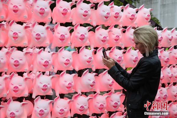 Một cô gái đang chụp ảnh những chiếc đèn lồng hình con lợn hồng ngộ nghĩnh, đáng yêu.