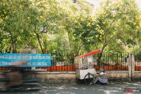 Những xe hàng ăn vặt dưới bóng cây.