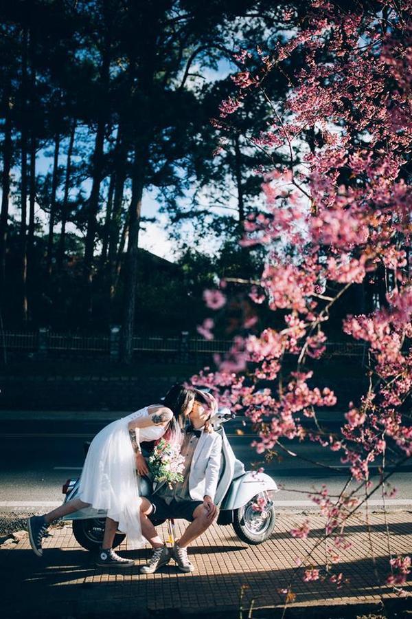 Nhiều cặp đôi cũng tranh thủ chụp cho mình một bộ ảnh cưới thật lung linh bên mai anh đào. Ảnh: Du lịch xuyên Việt