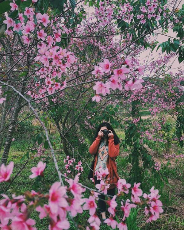 Chuyện tình lãng mạn như hoa. Ảnh: @maika.mango.