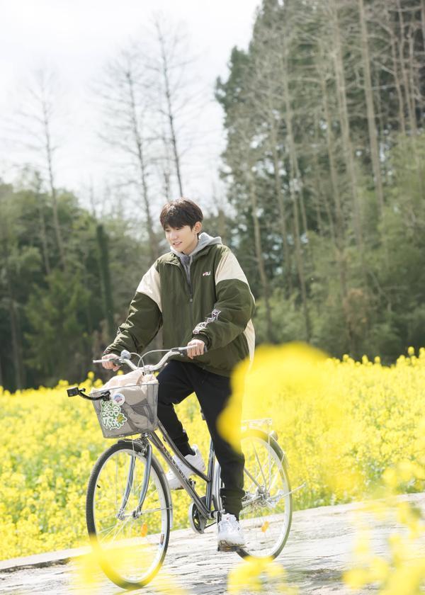 Tự do đạp xe giữa cánh đồng hoa cải vàng thơ mộng.