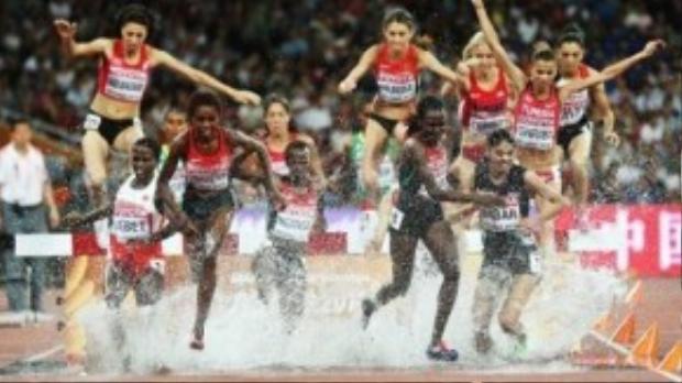 Một pha nhảy nước đẹp mắt của các vận động viên nữ.