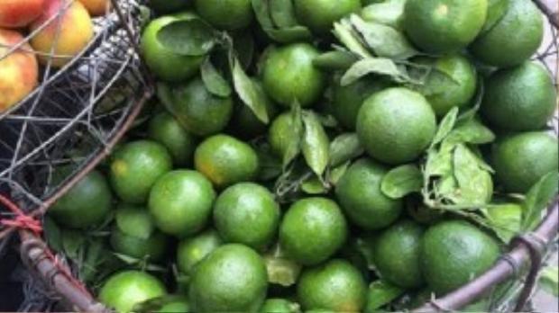 Mỗi ngày có gần 100 tấn cam xanh Trung Quốc được nhập về qua cửa khẩu Tân Thanh