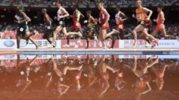 Các vận động viên nam in bóng dưới nước trên đường chạy 5.000m.