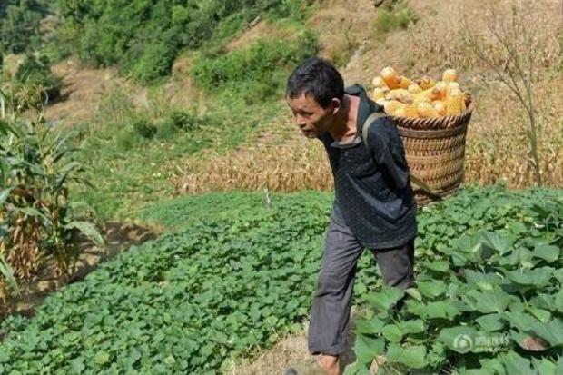 Câu chuyện cảm động về lòng hiếu thảo của chàng nông dân tật nguyền