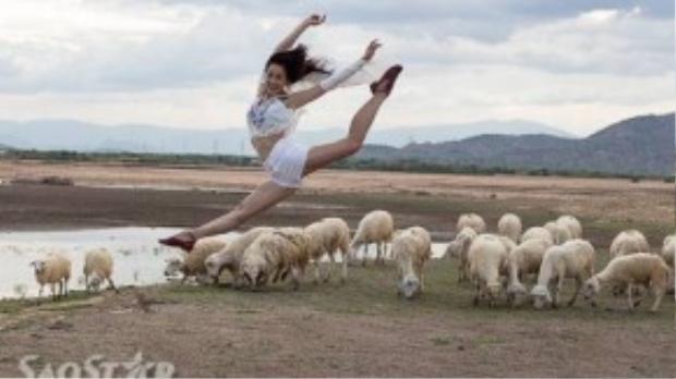 Đàn cừu làm nền cho một tấm ảnh rất đẹp trên Facebook của nghệ sĩ múa Trần Hoàng Yến.
