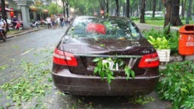Ôtô bốn chỗ bị nhánh cây rơi trúng gần giao lộ Hàn Thuyên - Pasteur, quận 1. Ảnh: Đ.T.