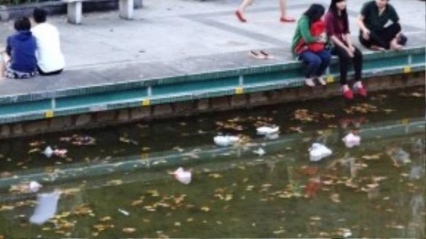 Hình ảnh vẫn thường gặp tại các địa điểm tập trung bạn trẻ. Rác trôi trên mặt hồ Con Rùa (TP HCM).