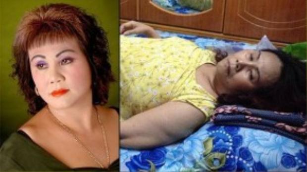Tháng 3/2014, cảnh nghèo và bệnh tật của nữ nghệ sĩ Hoàng Lan gây xôn xao giới nghệ sĩ Việt.