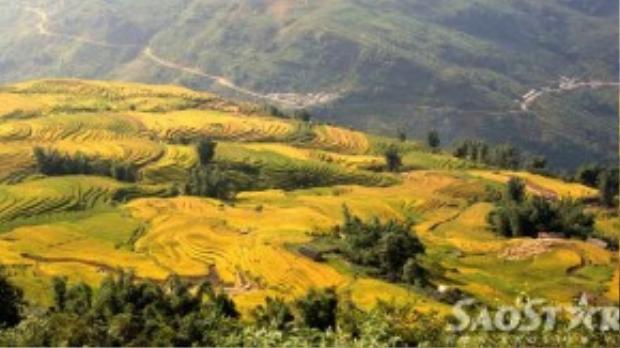 Tiếp tục từ Sàng Ma Sáo, chạy xe qua Dền Sáng bạn sẽ ghé thăm vùng đất trên trời Y Tý, nơi được mệnh danh là thiên đường lúa - mây của Việt Nam. Đây là xã vùng cao giáp biên với Trung Quốc nằm trên độ cao 2.000m so với mực nước biển, với những thung lũng lúa đẹp nhất tỉnh Lào Cai.