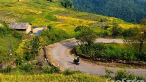 Các thung lũng và vùng phụ cận đẹp nhất ở Y Tý để bạn thăm quan phải kể đến: thung lũng Thiên Sinh, Ngải Thầu, Khu Chu Lìn và đường ra xã vùng biên A Lù.