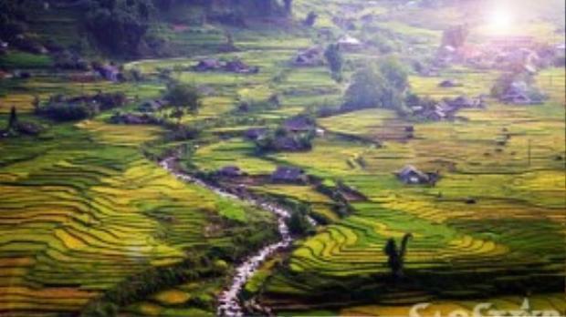 Trong bảng xếp hạng 30 thắng cảnh đẹp nhất thế giới, ruộng bậc thang Sapa chiếm một vị trí rất trang trọng và là niềm tự hào của du lịch Việt Nam.