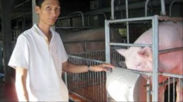 Anh Tuấn và trang trại muôi lợn bằng máy lạnh khép kín mang lại thu nhập hơn 400 triệu mỗi năm.