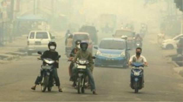 Cháy rừng gây khói mù mịt ở tỉnh Jambi
