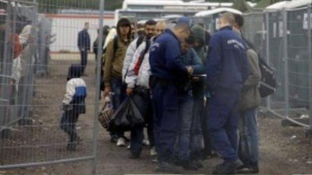 Ngày càng nhiều người tị nạn đến đăng ký tại trại Roszke ở biên giới Hungary và Serbian. (Nguồn: Internet)