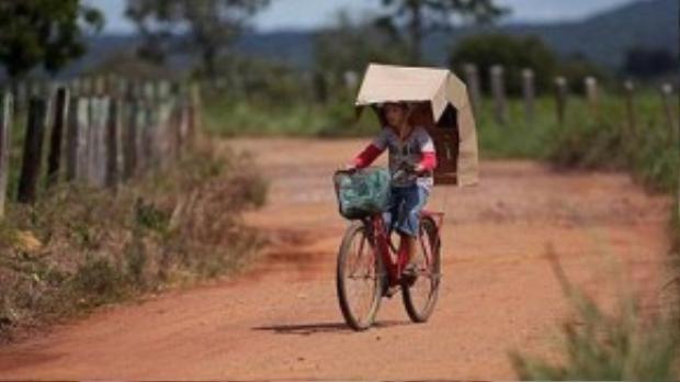Các chuyên gia cho rằng trẻ em cũng có thể mắc bệnh và hiện chưa có thuốc chữa. Họ khuyến cáo dân làng Araras tìm các biện pháp để tránh tiếp xúc ánh nắng.