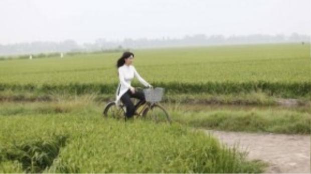 Thấp thoáng giữa cảnh thiên nhiên rộng lớn là bóng dáng của cô nữ sinh nho nhỏ, khoác lên mình tà áo dài trắng ngây thơ, đạp xe ngược chiều gió băng qua từng ngọn lúa.