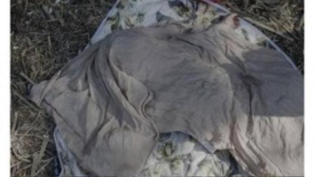 Juliana, 2 tuổi, chùm trăn ngủ dưới cái nóng 34 độ C vì quá nhiều ruồi muỗi vo ve quanh mũi em. Gia đình em đã đi bộ trong 3 tháng ròng dọc Serbia đến biên giới Hungary.