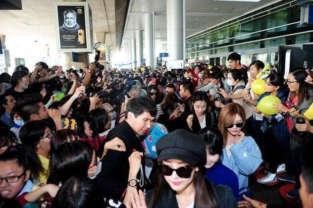 5 sao ngoại từng khiến fan 'náo loạn' khi đến Việt Nam trong năm 2015