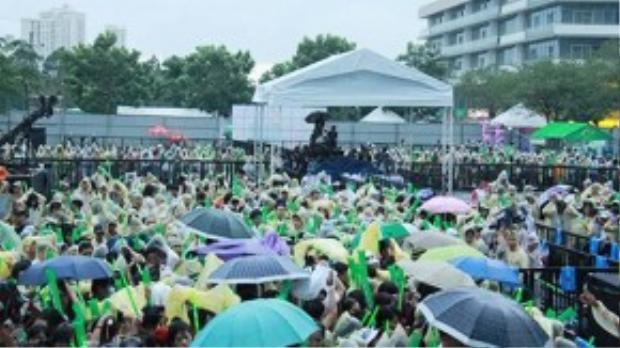 Hàng nghìn người đội mưa, cổ vũ, reo hò trước sự xuất hiện của Sơn Tùng M-TP.