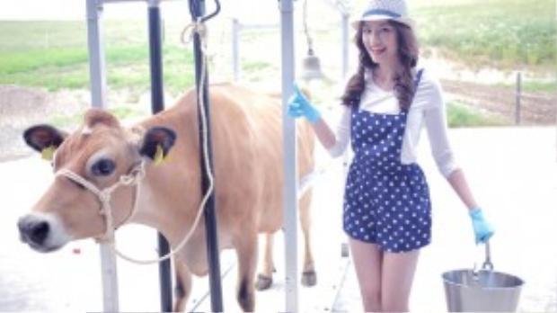 Trúc Diễm ngượng ngùng kể, mấy chú bò rất hiền, nhưng chúng cứ động đậy là cô sợ hãi chạy ra xa.