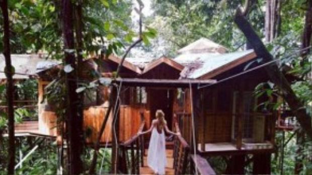 Những lúc rảnh rỗi, Candice thường thích lui tới các nơi như Costa Rica, Bora Bora hay Tahiti để du lịch. Candice và một thiên thần khác là người mẫu Sara Sampaio từng rủ nhau tới Bora Bora nghỉ dưỡng.