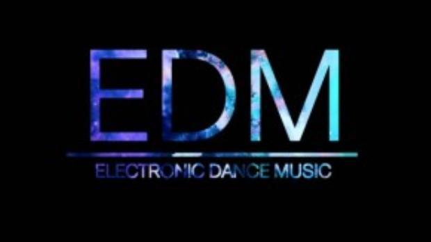 EDM gồm nhiều nhánh nhỏ như house, trance, electro, techno, dubstep, moonbathon, trip hop…