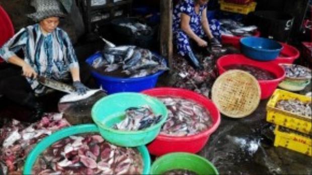 Hàng ngày, hàng trăm lao động ở các vùng quê nghèo Bình Định thức dậy từ 2h khuya đến bến cảng mua cá, mực tươi rồi mang về lò hấp ở phường Hải Cảng (TP Quy Nhơn) để sơ chế.