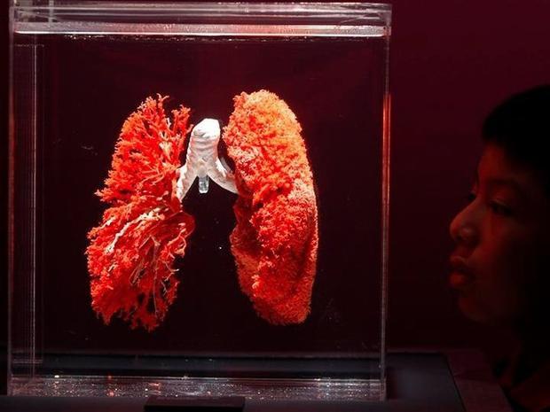 Công nghệ in 3D sẽ sớm in được cơ thể người hoàn chỉnh