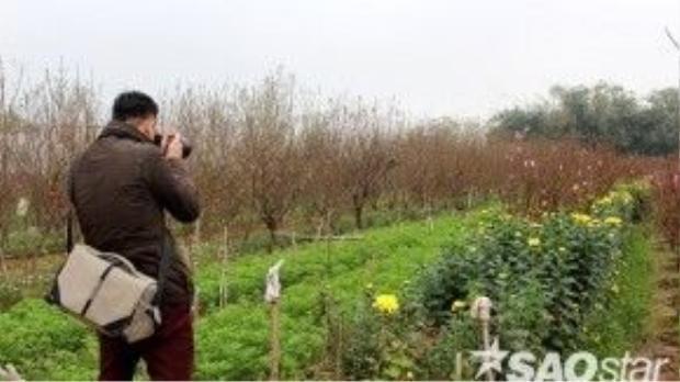 Vẻ đẹp của những ruộng hoa làng Quảng Bá thu hút nhiếp ảnh gia.